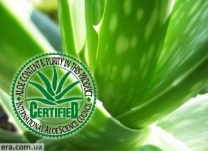 flp sertifikat