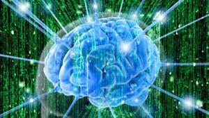 kletki mozga