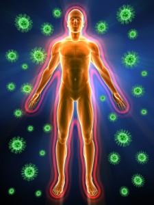 rabota-immunnoy-sistemyi
