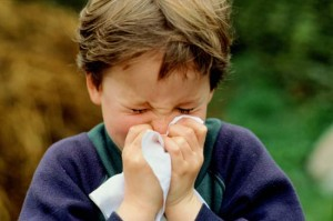 gripo-viruso