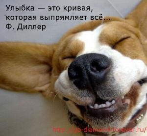 normal_ulibka