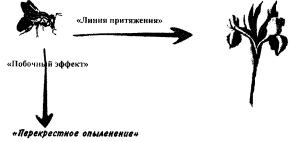 126658_html_