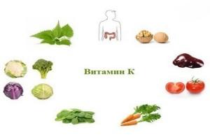 produkty-soderzhashchiye-vitamin-k