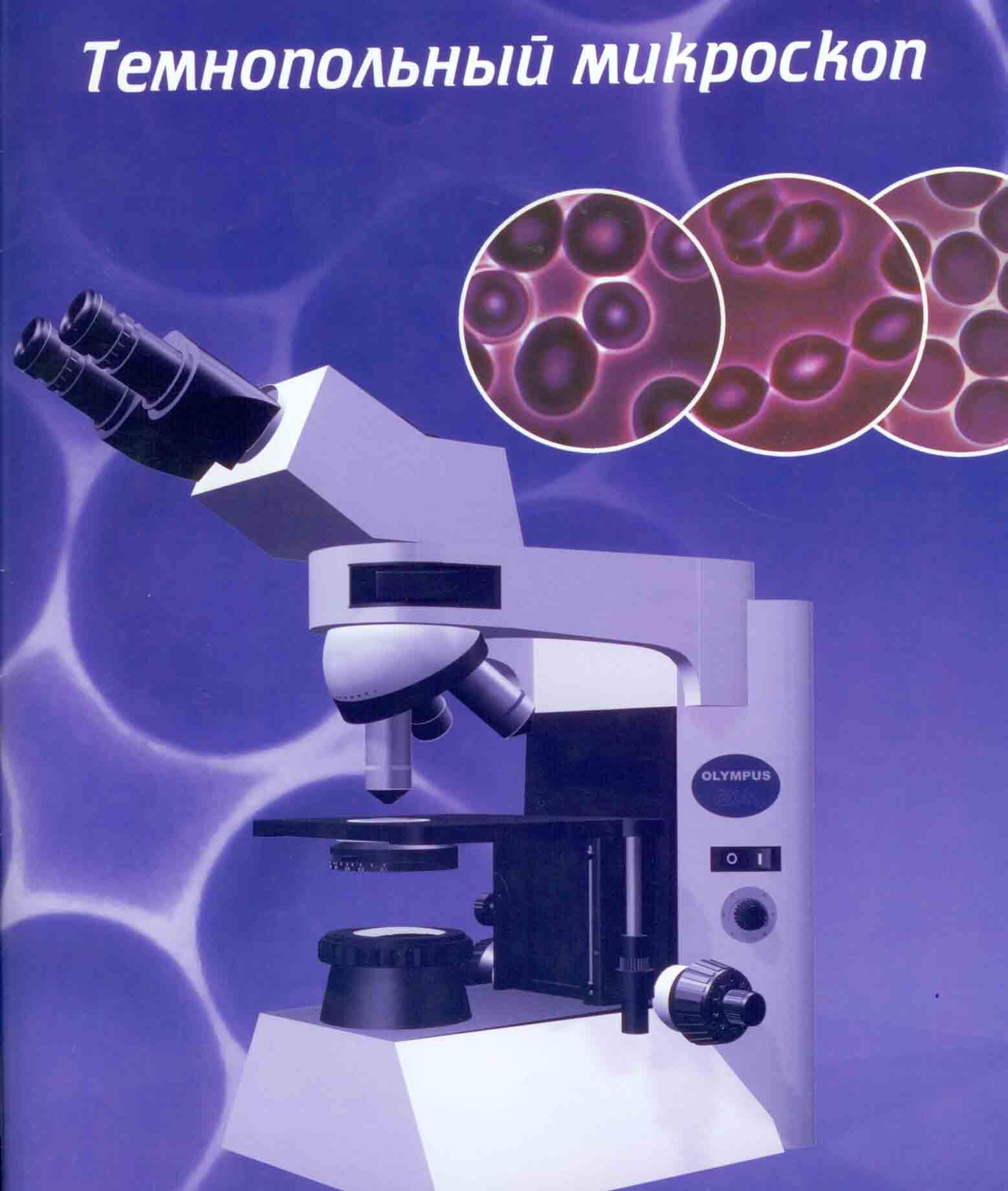 Анализ здоровья по капле крови биохимический анализ крови липиды норма 5-11 ммоль/л